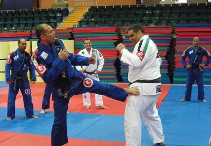 Entenda conceitos fundamentais do Jiu-Jitsu, por Cesar Palhares