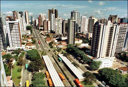 CBJJ lança Curitiba Open de Jiu-Jitsu, já com inscrições abertas