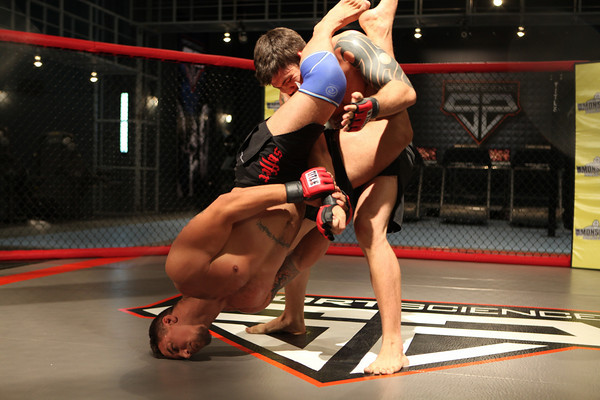 How does an armbar work, according to science?
