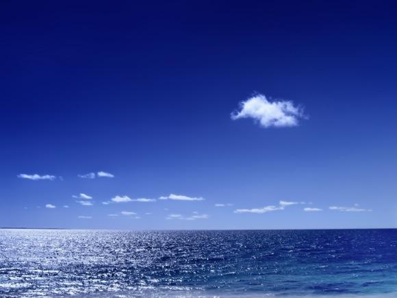 Um oceano chamado Jiu-Jitsu