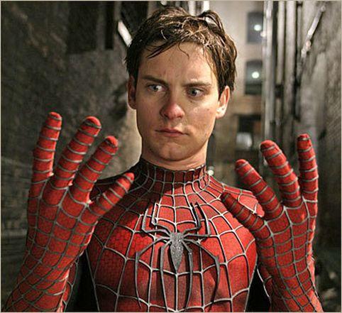 Finalize da guarda-aranha!