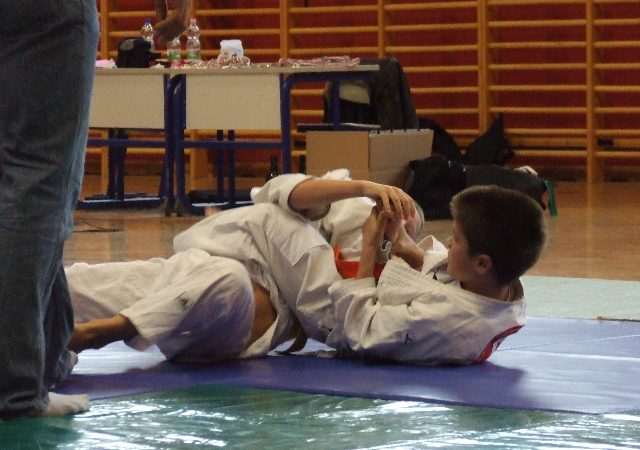 Hungary's kids compete in Jiu-Jitsu