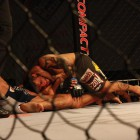 Submissions and knockouts in Bitetti Combat gallery