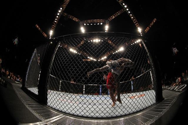 Dois atletas de MMA no octagon do UFC. Foto: Divulgação/UFC.