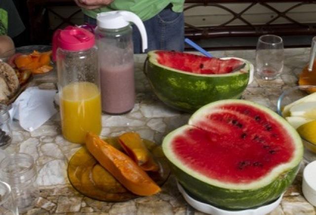 Uma mesa de almoço ou lanche típica da Dieta Gracie: sucos de açaí e de laranja lima, melancia, mamão e queijos brancos.