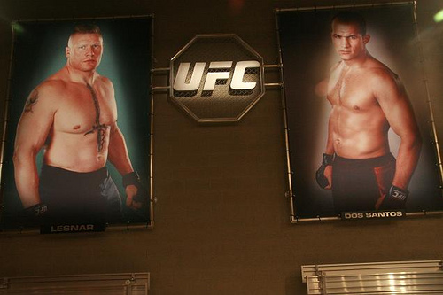 What we've learned from the UFC reality show