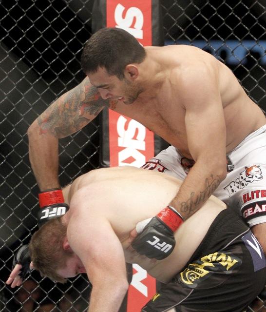 Werdum UFC 147