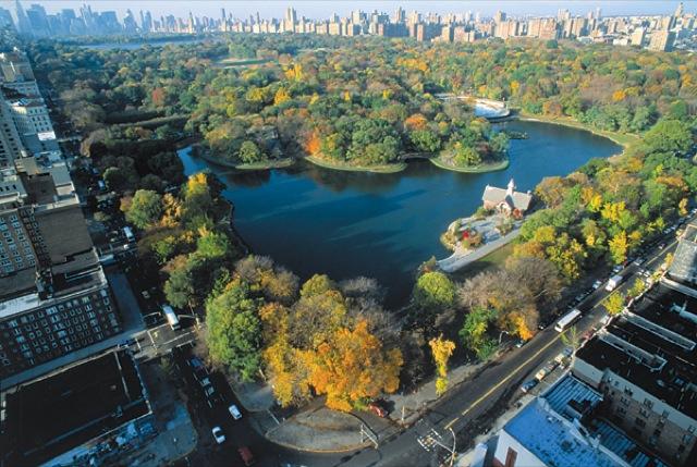 Central Park em NY em vista area