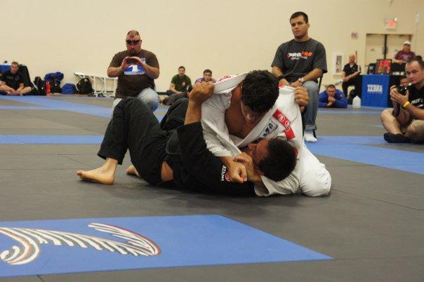 golpes de jiu jitsu faixa branca