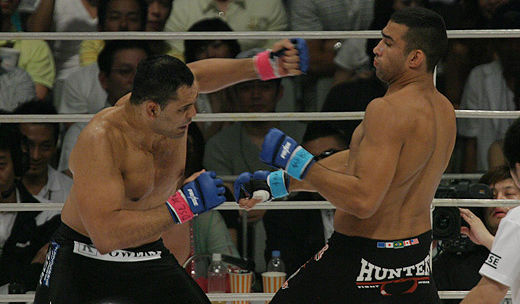 What do you expect from Rodrigo Minotauro vs. Fabricio Werdum, this June?