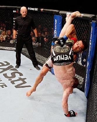 Rafael dos Anjos dominou Mark Bocek, no UFC 154. Foto: UFC/Josh Hedges