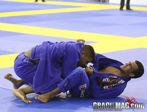 Europeans 2013: Photo Gallery of Purple Belts in Lisbon