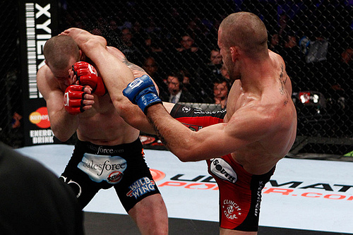 Photo Gallery: The Strikeforce Finale in Images