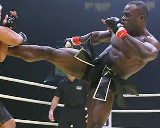 Sparring de Lyoto, Melvin Manhoef luta no One FC
