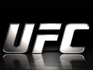 O mês de junho começou movimentado para os brasileiros do UFC.