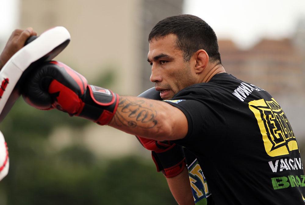 Fera do Jiu-Jitsu, Werdum foca no boxe para luta contra Minotauro. Foto: Josh Hedges/ZuffaLLC via Getty Images
