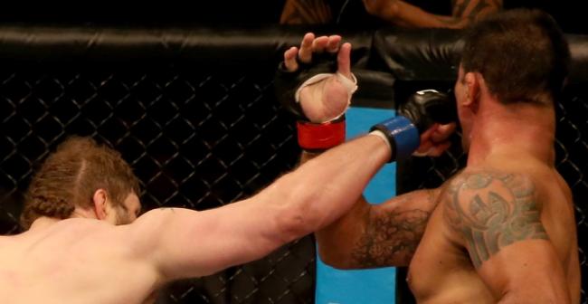 UFC Abu Dhabi: Minotauro é nocauteado por Roy Nelson no 1º round