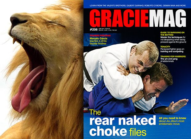 GM #206: The rear naked choke files