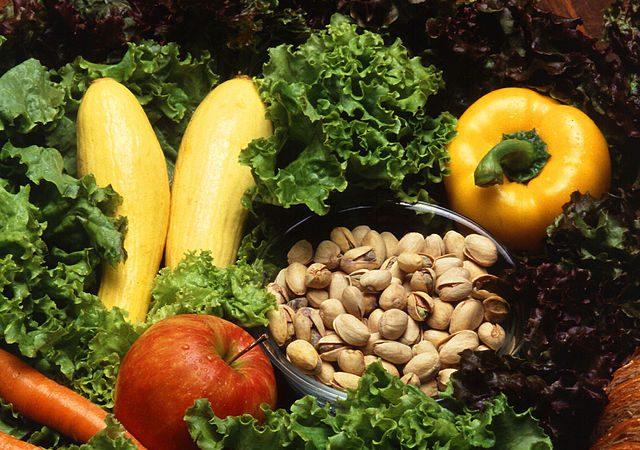 Dieta Gracie: aprenda a acelerar o seu metabolismo e vencer a balança
