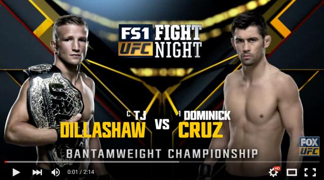 UFC Boston: watch the highlights of how Cruz beat Dillashaw to regain the belt
