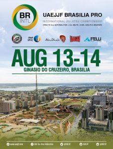 brasilia-745x985